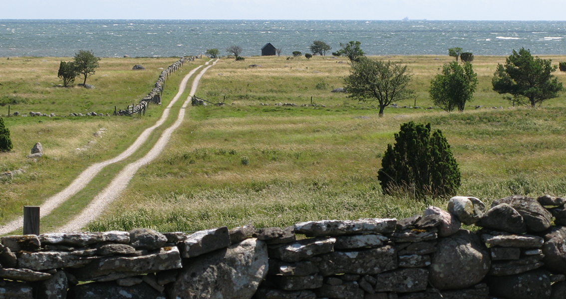 Final-bild-Gotland2.fw_